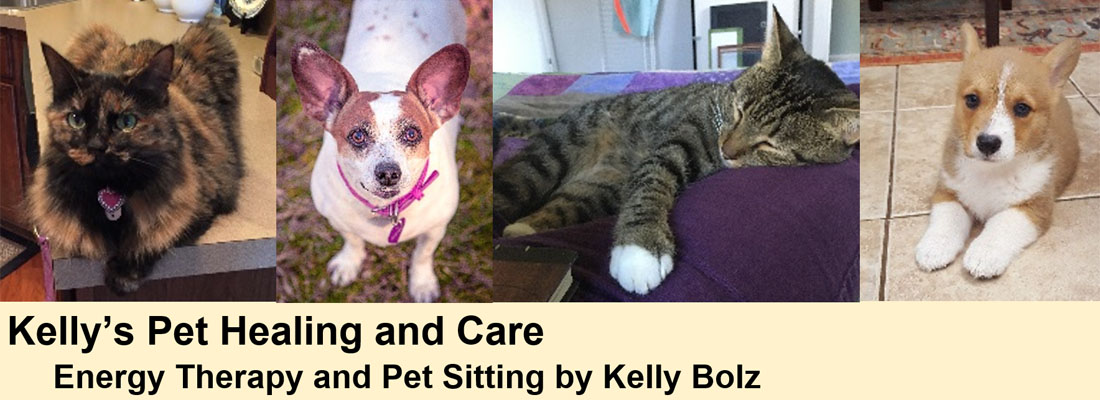 Kelly's Pet Healing and Care